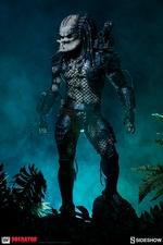 Макеты Хищник охотников за джунглями Sideshow Collectibles Predator фотография-18.jpg
